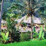 Vila Santai  Exterior from Rice Paddies