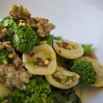 Hand Made Orecchiette, Broccoli, Spicy Sausage