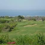 Pic from around the Cabo Real course