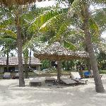 Bungalows on the beach