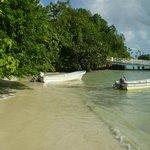 Vom Kreuzfahrtschiff ging es mit Booten an den Strand.
