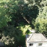 View of the garden from the attic room