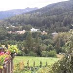 vista dell'hotel da Mezzana