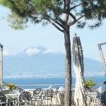 VIEW OF VESUVIUS FROM GARDENS