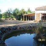 The airy outdoor yoga studio