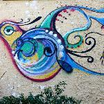 Beautiful graffiti near the entrance of the pousada