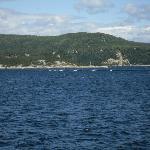 Les baleines sur le St Laurent