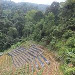 Sortie de jungle mais pas fin de trail !!