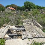 Ruins on Tintamarre