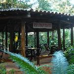 salão do restaurante no bosque