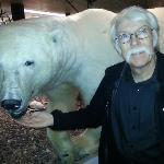 Polar bear friend