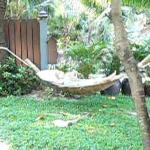 a hammock overlooking the beach in our villa