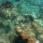 Sea in Kas