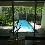 A View of The Plunging Pool from the Living Room.