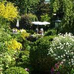 Garden at Hotel