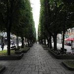Пешеходная улица в центр города
