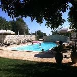 La piscina con l'ombra dei carrubi