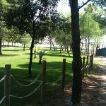 гольф поле(