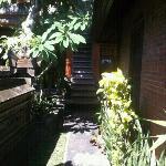 Photo of Raka House