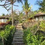 les escaliers et les bungalows
