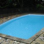 piscine 8 x 4