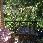vista cucina sul giardino