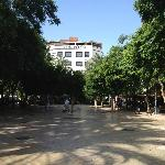 The tree lined square in front....