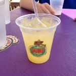 $2 Mimosa