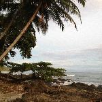 Beach of Montezuma