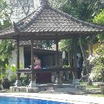 Gazebo by rear pool