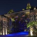 Rainforest Gate