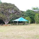 BBQ area in campground