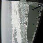 Predator Ridge View Room