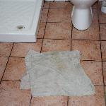la serpillère qui fait office de descente de douche