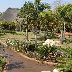 Summerfield Botanical Garden Foto
