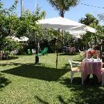Il nostro giardino a disposizione dei nostri ospiti