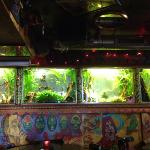 Wall with aquariums