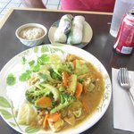 2 Spring Rolls, Vegetables in Curry