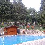 Vista del jardín des de la piscina