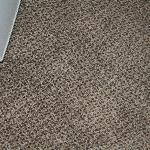carpet in room