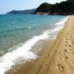 sea shore...