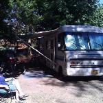 Camp site 47, Vine Maple Hollow