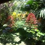 vue terrasse sur le jardin