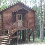 The front of tree top cabin