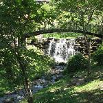 One of the many waterfalls thru-out Big Cedar