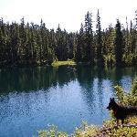 Bare Lake