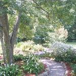 Garden area behind The Grange