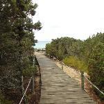 Walkways around the dunes