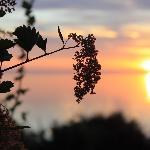 Port Angeles Harbor Sunrise