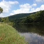 Fishing the West Branch of the Delaware River